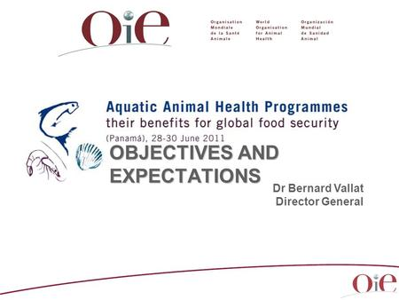 OBJECTIVES AND EXPECTATIONS Dr Bernard Vallat Director General.