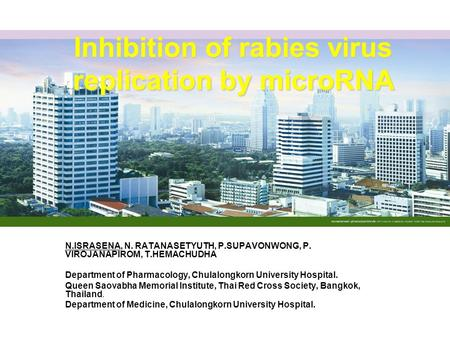 Inhibition of rabies virus replication by microRNA N.ISRASENA, N. RATANASETYUTH, P.SUPAVONWONG, P. VIROJANAPIROM, T.HEMACHUDHA Department of Pharmacology,