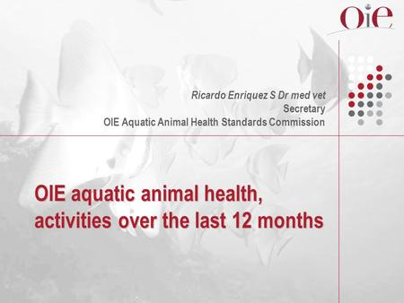 OIE aquatic animal health, activities over the last 12 months Ricardo Enriquez S Dr med vet Secretary OIE Aquatic Animal Health Standards Commission.