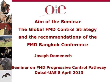 Aim of the Seminar The Global FMD Control Strategy and the recommendations of the FMD Bangkok Conference Joseph Domenech Seminar on FMD Progressive Control.