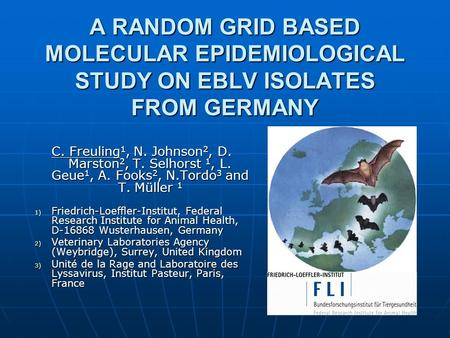 A RANDOM GRID BASED MOLECULAR EPIDEMIOLOGICAL STUDY ON EBLV ISOLATES FROM GERMANY C. Freuling 1, N. Johnson 2, D. Marston 2, T. Selhorst 1, L. Geue 1,