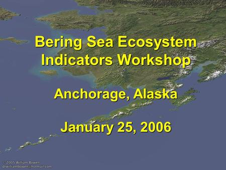 Bering Sea Ecosystem Indicators Workshop Anchorage, Alaska January 25, 2006.