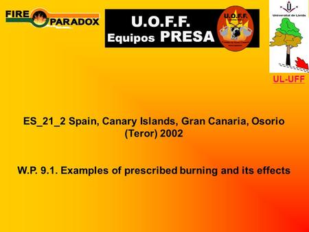 ES_21_2 Spain, Canary Islands, Gran Canaria, Osorio (Teror) 2002 W.P. 9.1. Examples of prescribed burning and its effects UL-UFF.