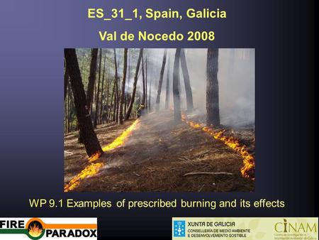 ES_31_1, Spain, Galicia Val de Nocedo 2008 WP 9.1 Examples of prescribed burning and its effects.