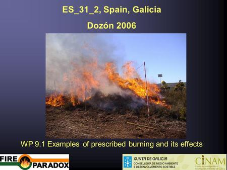 ES_31_2, Spain, Galicia Dozón 2006 WP 9.1 Examples of prescribed burning and its effects.