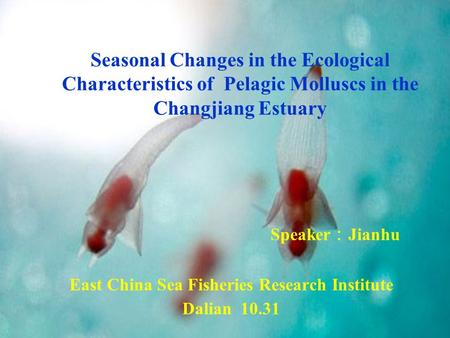 Speaker Jianhu East China Sea Fisheries Research Institute Dalian 10.31 Seasonal Changes in the Ecological Characteristics of Pelagic Molluscs in the Changjiang.