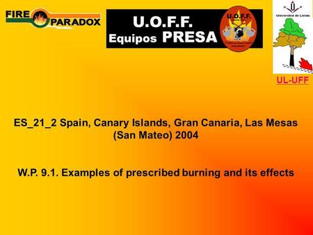 ES_21_2 Spain, Canary Islands, Gran Canaria, Las Mesas (San Mateo) 2004 W.P. 9.1. Examples of prescribed burning and its effects UL-UFF.