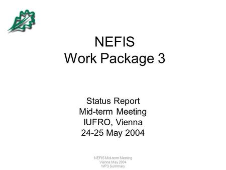 NEFIS Mid-term Meeting Vienna May 2004 WP3 Summary NEFIS Work Package 3 Status Report Mid-term Meeting IUFRO, Vienna 24-25 May 2004.