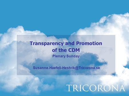 Transparency and Promotion of the CDM Plenary Sunday