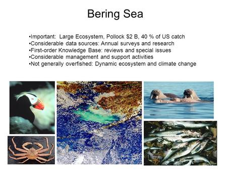 Bering Sea Important: Large Ecosystem, Pollock $2 B, 40 % of US catch Considerable data sources: Annual surveys and research First-order Knowledge Base: