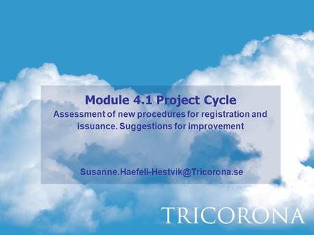Module 4.1 Project Cycle Assessment of new procedures for registration and issuance. Suggestions for improvement