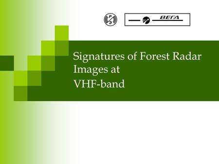 Signatures of Forest Radar Images at VHF-band. BioGeoSAR07 Overview Airborne SAR system IMARK Simultaneous radar and ground-based forest measurements.