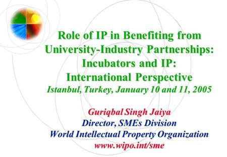 Role of IP in Benefiting from University-Industry Partnerships: Incubators and IP: International Perspective Istanbul, Turkey, January 10 and 11, 2005.