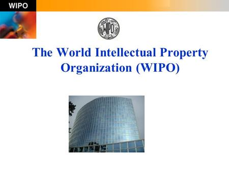The World Intellectual Property Organization (WIPO)