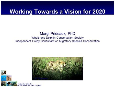Conserving animals on the move for over 25 years Working Towards a Vision for 2020 Margi Prideaux, PhD Whale and Dolphin Conservation Society Independent.