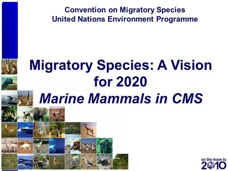 1 Conserving animals on the move for over 25 years Convention on Migratory Species United Nations Environment Programme Migratory Species: A Vision for.
