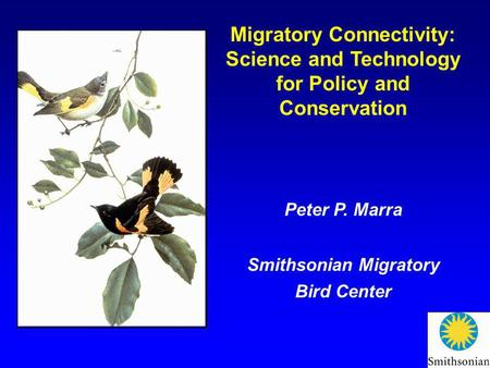 Migratory Connectivity: Science and Technology for Policy and Conservation Peter P. Marra Smithsonian Migratory Bird Center.