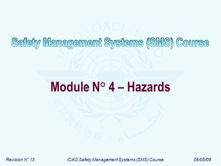 Revision N° 13ICAO Safety Management Systems (SMS) Course06/05/09 Module N° 4 – Hazards.