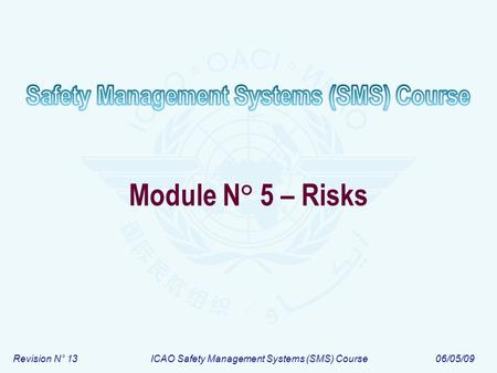 Revision N° 13ICAO Safety Management Systems (SMS) Course06/05/09 Module N° 5 – Risks.