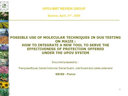 1 UPOV-BMT REVIEW GROUP Geneva, April, 2 nd, 2009 POSSIBLE USE OF MOLECULAR TECHNIQUES IN DUS TESTING ON MAIZE : HOW TO INTEGRATE A NEW TOOL TO SERVE THE.