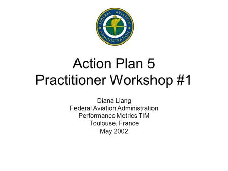 Action Plan 5 Practitioner Workshop #1 Diana Liang Federal Aviation Administration Performance Metrics TIM Toulouse, France May 2002.