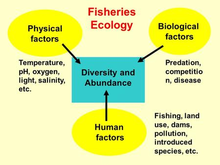 Diversity and Abundance Human factors Biological factors Physical factors Temperature, pH, oxygen, light, salinity, etc. Predation, competitio n, disease.