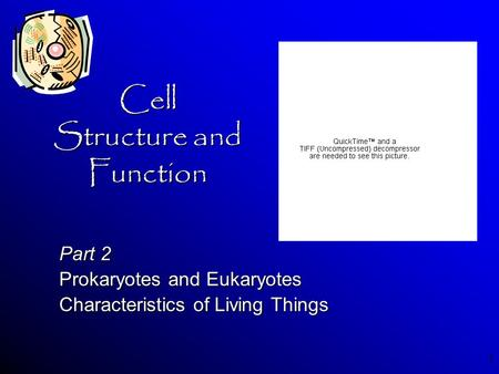 1 Cell Structure and Function Part 2 Prokaryotes and Eukaryotes Characteristics of Living Things.