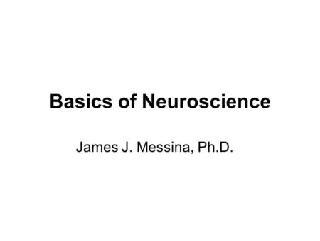 Basics of Neuroscience James J. Messina, Ph.D..