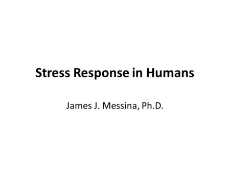 Stress Response in Humans James J. Messina, Ph.D..
