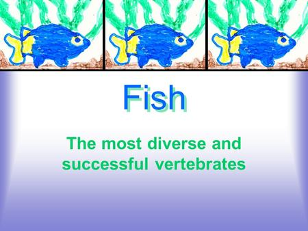Fish The most diverse and successful vertebrates.