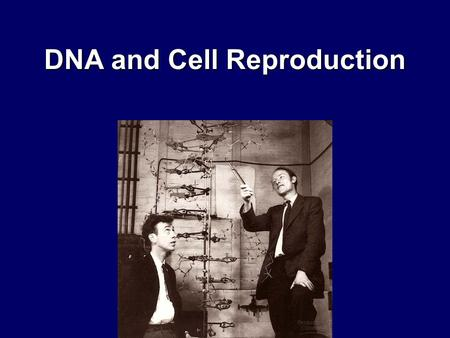DNA and Cell Reproduction. Structure of DNA Deoxyribonucleic Acid DNA is one of the two nucleic acids –DNA –RNA It is composed of repeating subunits (monomers)