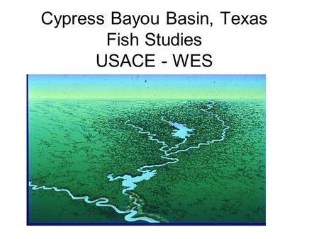 Cypress Bayou Basin, Texas Fish Studies USACE - WES.