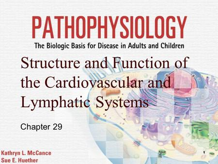 1 Structure and Function of the Cardiovascular and Lymphatic Systems Chapter 29.