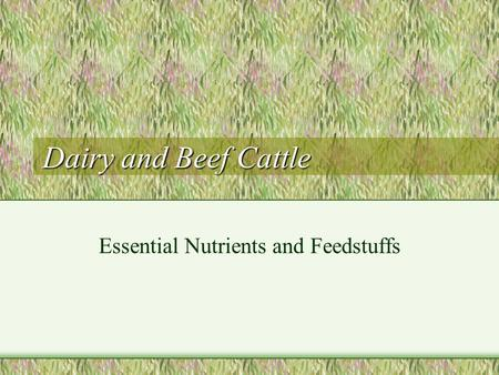 Dairy and Beef Cattle Essential Nutrients and Feedstuffs.