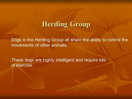 Herding Group Dogs in the Herding Group all share the ability to control the movements of other animals. These dogs are highly intelligent and require.