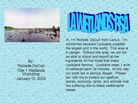 By: Richelle DeCuir Title 1 Wetlands Workshop January 15, 2004 Hi, Im Richelle DeCuir from CenLA. Im concerned because Louisiana supplies the largest port.