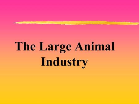 The Large Animal Industry. The Meat Industry zEach year the average person in this country consumes 97 pounds of beef and veal, 64 pounds of pork, and.