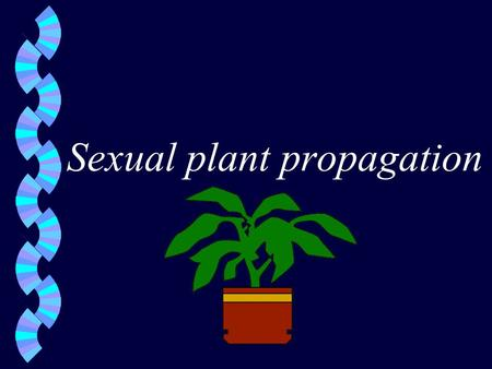 Sexual plant propagation. Propagation of plants from seeds w Composition of seeds w Seed coat- outside covering which protects embryonic plant w endosperm-