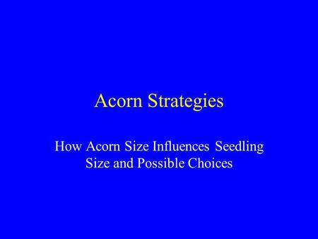 Acorn Strategies How Acorn Size Influences Seedling Size and Possible Choices.