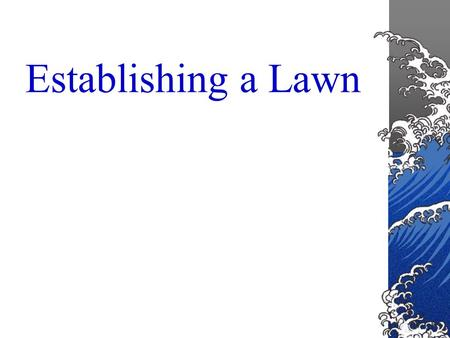 Establishing a Lawn Lawns are a major part of the home landscape.