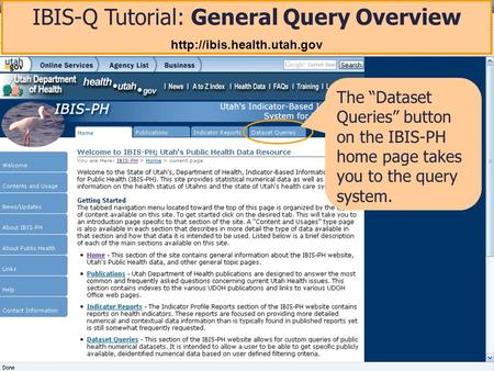 IBIS-Q Tutorial: General Query Overview  The Dataset Queries button on the IBIS-PH home page takes you to the query system.