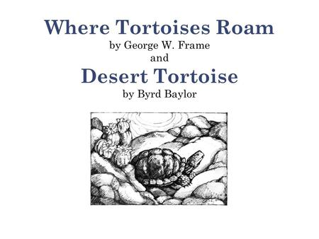 Where Tortoises Roam by George W. Frame and Desert Tortoise by Byrd Baylor.