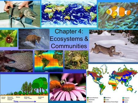 Chapter 4: Ecosystems & Communities. Section 4.1 – The Role of Climate In Earths atmosphere, temperature, precipitation, and other environmental factors.