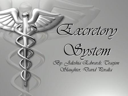 Excretory System By: Jaleshia Edwards, Trazjon Slaughter, David Peralta.