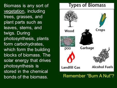 Biomass is any sort of vegetation, including trees, grasses, and plant parts such as leaves, stems, and twigs. During photosynthesis, plants form carbohydrates,