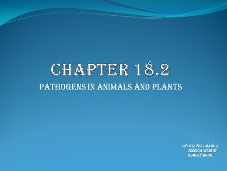 Pathogens in Animals and Plants By: Steven Shanks Jessica Wright Ashley Berg.