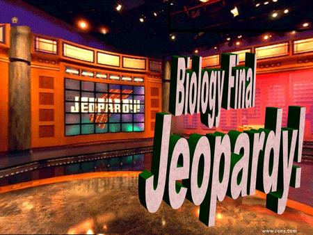 Biology Jeopardy 100 200 100 200 300 400 500 300 400 500 100 200 300 400 500 100 200 300 400 500 100 200 300 400 500 Evolution Homeostasis Energy,