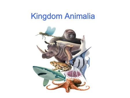 Kingdom Animalia. Animals are defined as: Heterotrophic (not making their own food) multi-cellular Having eukaryotic cells Having cells with no cell walls.