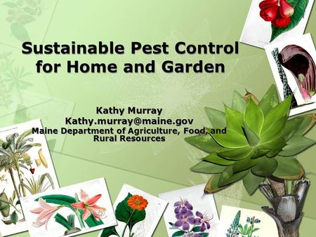 Sustainable Pest Control for Home and Garden Kathy Murray Maine Department of Agriculture, Food, and Rural Resources Kathy Murray.