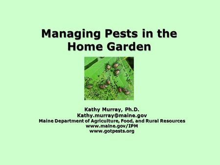 Managing Pests in the Home Garden Kathy Murray, Ph.D. Maine Department of Agriculture, Food, and Rural Resources
